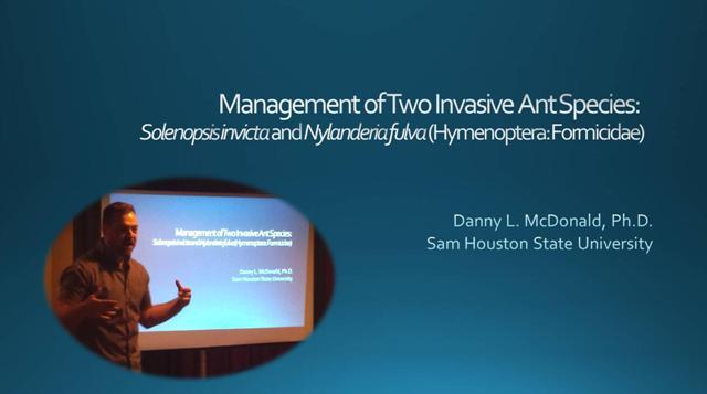 Tawny Crazy Ant Presentation - Dr. Danny McDonald
